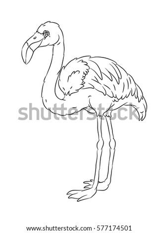 Happy Smiling Cartoon Standing Flamingo Coloring Stock Vector
