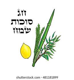 Happy Sukkot Festival background. Hebrew translate: Happy Sukkot Holiday. Jewish traditional four species lulav etrog for Jewish Holiday Sukkot Israel Vector card Sukkah Rosh Hashanah 5779 celebrate