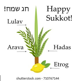 Happy sukkot set  educational icons, with inscription. Collection  objects, elements for Jewish Feast of Tabernacles with etrog, lulav, Arava, Hadas. Isolated on white background. Vector illustration