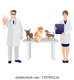 Happy vet doctor and hurse with dogs and cat. Pet shop poster dog and cat silhouette. Vector cartoon illustration