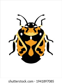 harlequin bugs. flat vector illustration of bugs. insects and garden concept animated in colorful theme. cartoon illustration of nature isolated on white background.