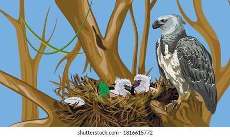 harpy in nowhere on a tree with birds