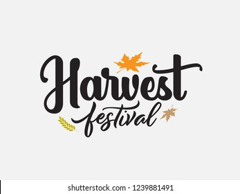 Harvest Festival hand drawing. lettering Harvest Festival with leaf. Modern calligraphy. Handwritten vector illustration on white background for cards, posters, banner
