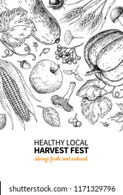 Harvest festival. Hand drawn vintage vector frame illustration with vegetables, fruits, leaves. Farm Market poster. Vegetarian set of organic products. Detailed food drawing for menu, flyer, label