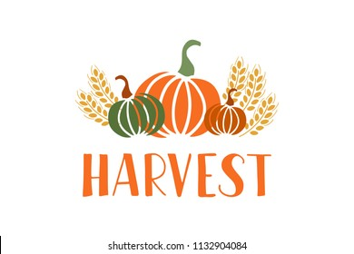 Harvest - hand drawn lettering phrase and autumn harvest symbols. Harvest fest poster design. Vector illustration. Isolated on white background.