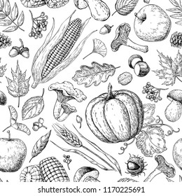 .Harvest products seamless pattern. Hand drawn vintage vector background with pumpkin, apple, corn, wheat, muchroom. Farm Market. Organic Vegetarian set. Detailed food drawing.
