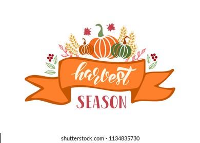 Harvest season - hand drawn lettering phrase and autumn harvest symbols. Harvest fest poster design. Vector illustration. Isolated on white background.