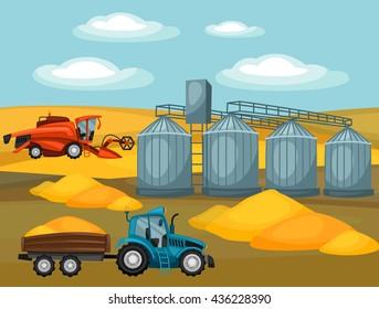 Harvesting grain. Combine harvester, tractor and granary. Agricultural illustration farm rural landscape.