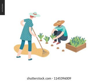 Harvesting people, fall - flat vector concept illustration of a man wearing straw hat gathering in ripe salad to the wooden box and a woman raking hay into the stack. Reaping the crop concept.