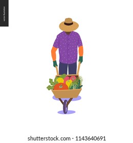 Harvesting people -vector flat hand drawn illustration of a young beared hipster man wearing straw hat driving a wheelbarrow full of green vegetables. Self-sufficiency, farming and harvesting concept