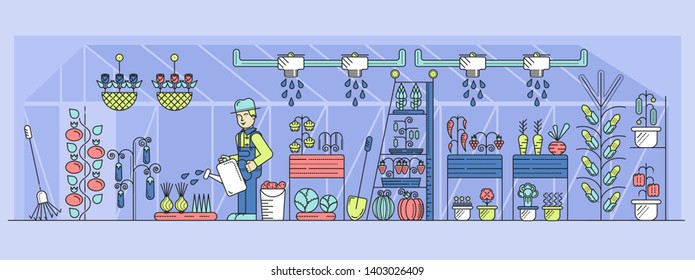 Hatted farmer watering vegetables and flowers in greenhouse. Positive grower working in hothouse with irrigation system, shovel, rake. Outline vector illustration. Organic food growing.
