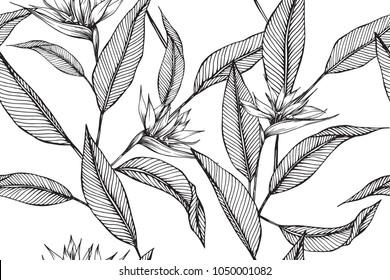 Imágenes Fotos De Stock Y Vectores Sobre Flores Tropicales