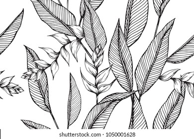 Hawaiian pattern seamless background with Heliconia flower and leaf  drawing illustration.