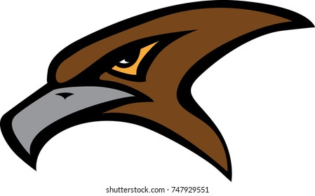Hawk head mascot and logo
