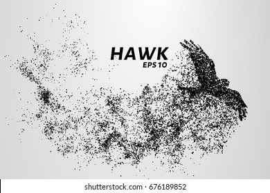 Hawk of the particles. The silhouette of a hawk consists of small circles
