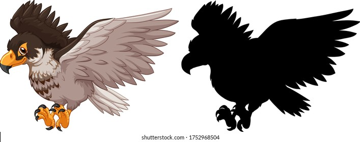 Hawk and its silhouette illustration