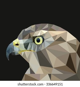 Hawk  in the style of low-poly on a black background. Vector illustration
