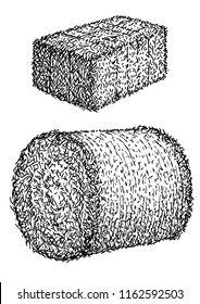 Hay, bale illustration, drawing, engraving, ink, line art, vector