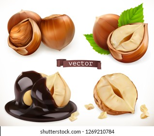 Hazelnut. 3d realistic vector icon set
