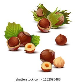 Hazelnuts with leaves. Isolated on white.