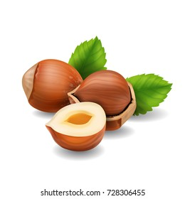 Hazelnuts with leaves realistic