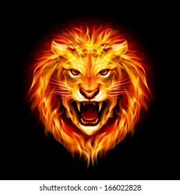Head of aggressive fire lion isolated on black background.