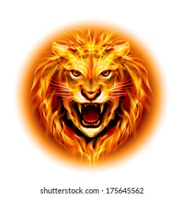Head of aggressive fire lion isolated on white background.