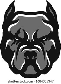 Head of American Bully Aggressive Pit Bull Dog Vector