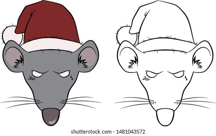 head of an angry rat in a New Year hat symbol of 2020 on a white background