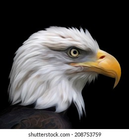 Head of bald eagle, haliaeetus leucocephalus, isolated on black background. Side face portrait of American eagle. Amazing vector image in oil painting style. Great for user pic, icon, label, tattoo.