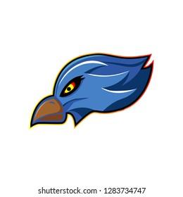 head blue bird logo design vector,creative wild bird falcon hawk