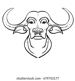 Head of a buffalo. Front view. Linear drawing. Vector illustration