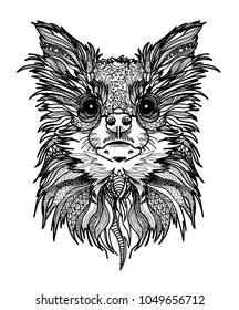 The head of a Chihuahua dog. Meditation, coloring of the mandala. Long hair and big eyes. Dog breeds. Drawing manually, templates. Strips, points, arrows. Spots of watercolor paint, spray.