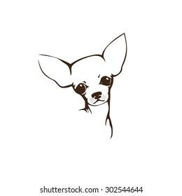 The head of chihuahua dog. Dog vector illustration. Company logo design