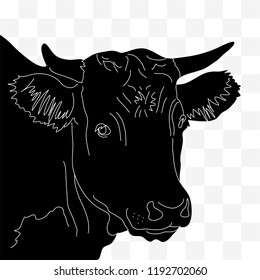 Head of a cow in black and white lines on a transparent background. Red, Irish angus.