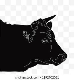 Head of a cow seen from the right in black silhouette with white lines on transparent background. Red, Irish angus.