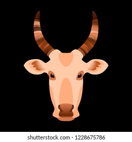 Head of a cow. Vector illustration. Black background