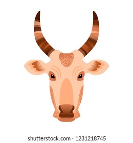 Head of a cow. Vector illustration. Grunge texture