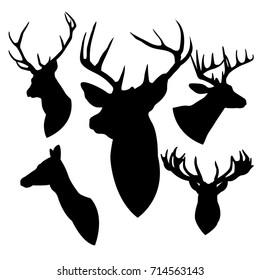 head deer black