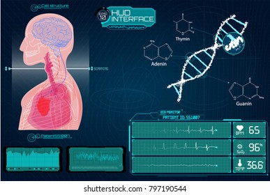 Head Up Display (HUD) UI for Medical App, Futuristic Medical HUD Interface, virtual graphic touch UI with illustration of Brain Scan, Heart Scan, DNA, Human Body, Molecule and Electrocardiogram.