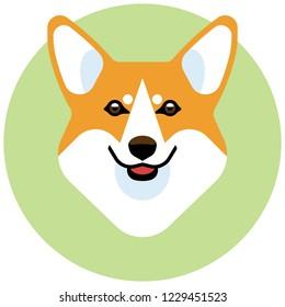 The head of a dog breed Corgi. Stylish vector image of the animal.