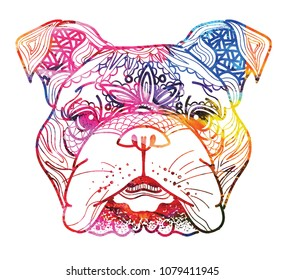 The head of a dog. English bulldog. Drawing manually in vintage style. Meditative coloring. Coloring for children. Points, patterns.