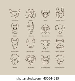 Head of dog and puppy set. Vector hand drawn dog breeds
