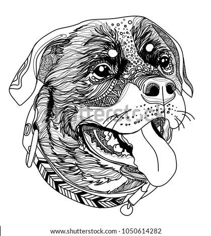 Head Dog Rottweiler Smiles Meditation Coloring Stock