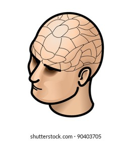 Head with (fake) phrenology lines.