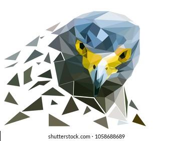 head of  falcon bird polygon ,look at us, vector art and illustration.