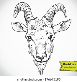 Goat Drawing Images, Stock Photos & Vectors | Shutterstock