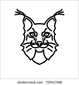 head of the lynx in the white and black