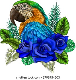 head parrot macaw palm tree and flowers, roses yellow green blue  vector illustration