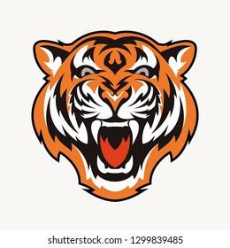 head tiger vector illustration